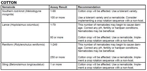 Cotton-Nematodes