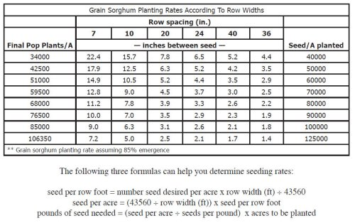 GrainSorghumPlantPopulation