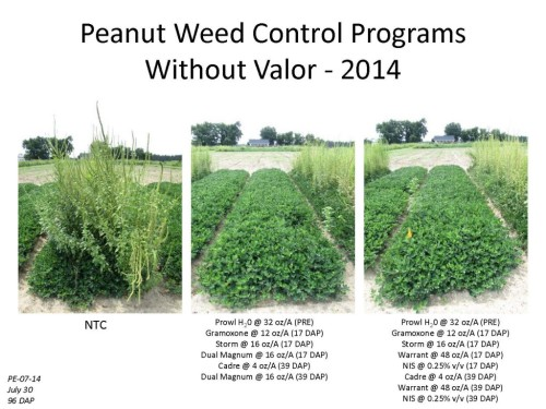 WeedControl-2015-WithoutValor