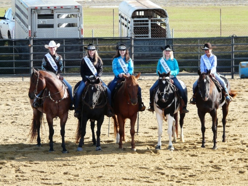 2015 Sunbelt Expo and Stock Horse Queens