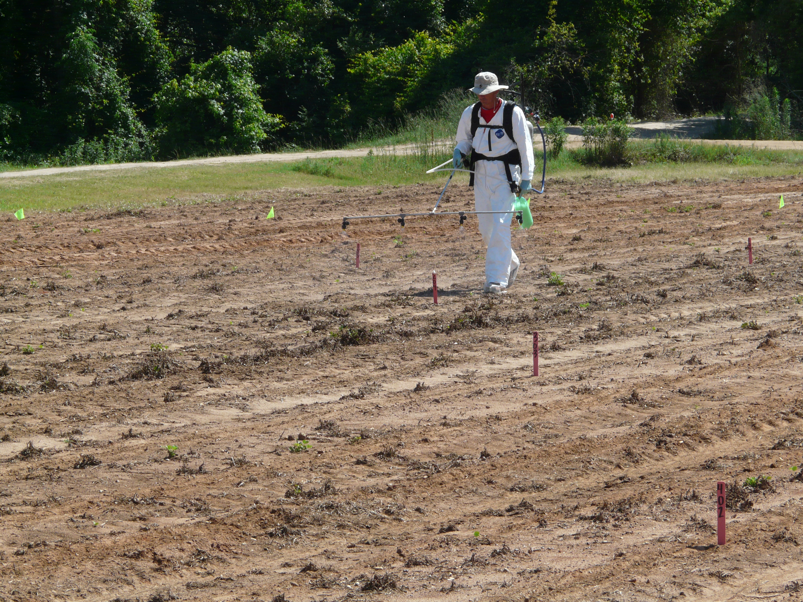 cotton response to preemergent herbicides in a sandy soil environment - Preemergent Herbicide