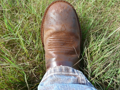 Leaf rust on boots